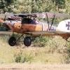 albotross-2-rb