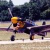 YAFgof-P40-3