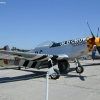 YAMgof-p51oldcrow-hires
