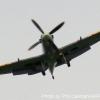 06-TOM-spitfire-4