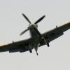 06-TOM-spitfire-hires-4